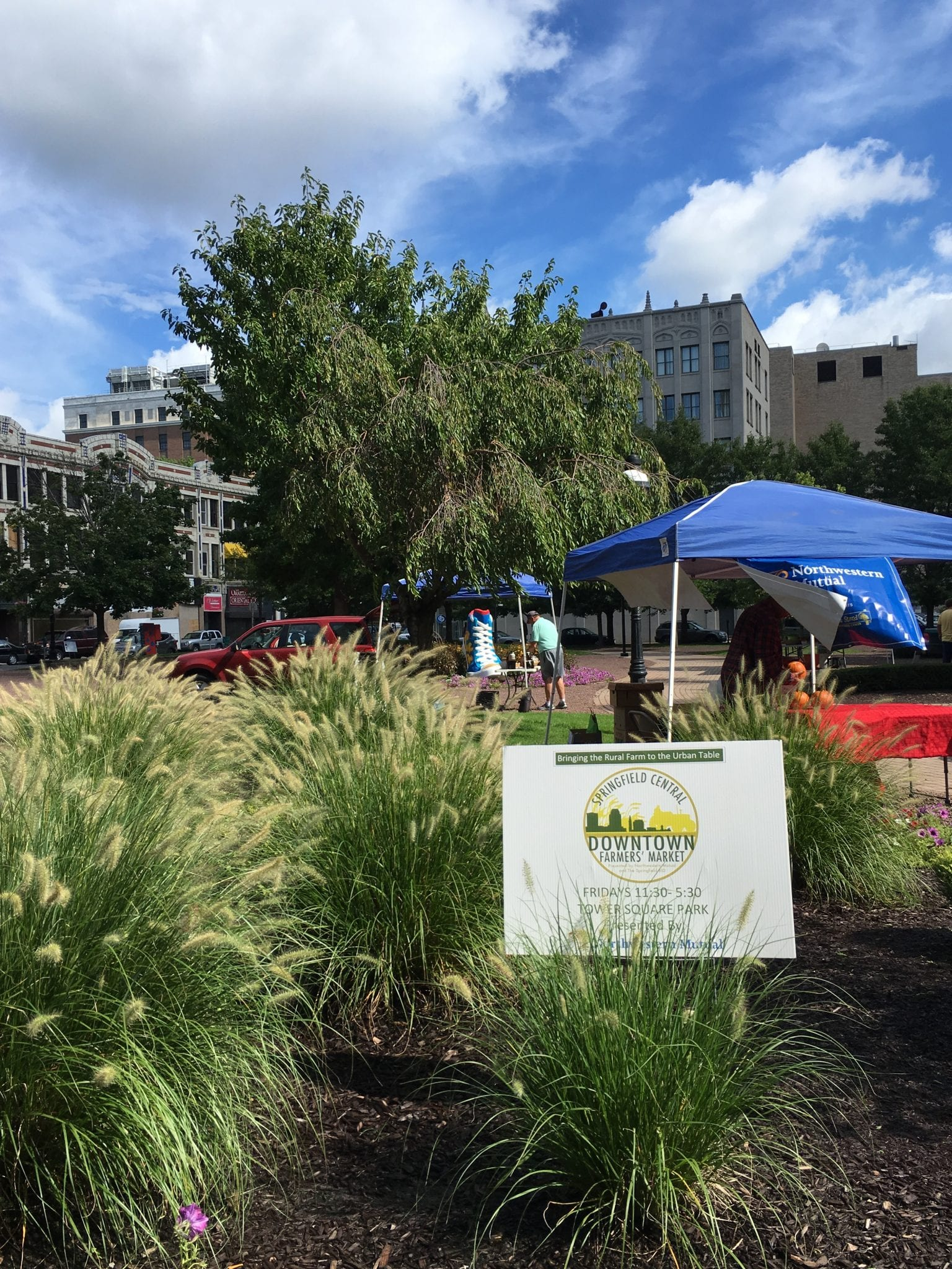 Downtown Springfield Farmers' Market Returns